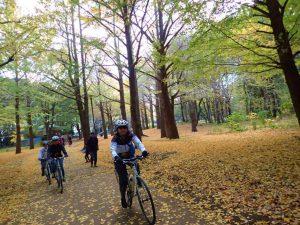 野川公園サイクリングロード